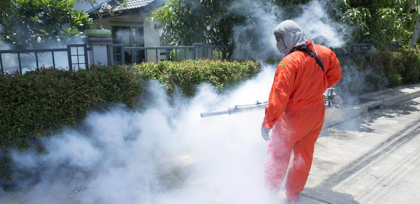 Why Is Pest Control So Much Important?
