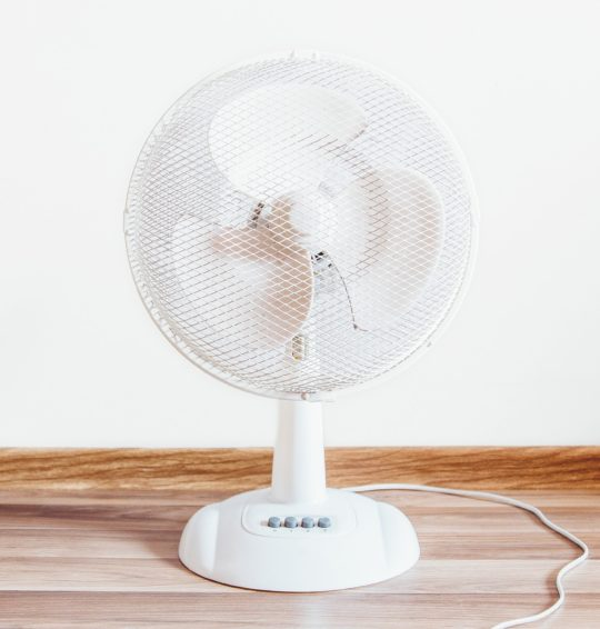 Buy High Quality Electric Fans Online In India At Luminous