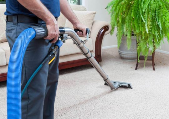 Professional Carpet Cleaners Sharing Best Cleaning Secrets